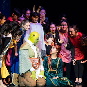 MSMusical_Shrek